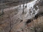 Ручей талой мутной воды